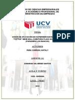 284675178-Monografia-Tottus-Completo.docx