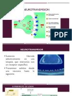 Neurotransmisores WEB