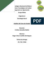 análisis de caso_RogerCastillo