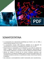 somatostatina y polipeptido pancreatico.pptx