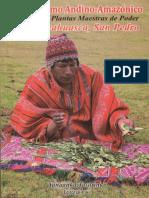 Tasorinki Yanaanka - Chamanismo Andino - Amazonico(Autosaved)