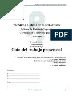 Guion_Prácticas_TBL_FV_2018-19