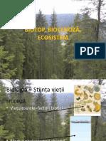 biotop_biocenoza_ecosistem_clasa_a_5a (1).pptx