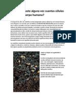 Primero 6 Las células eucariotas y procariotas.pdf
