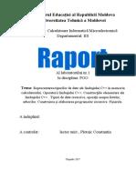 Lab 1 Cazacu POO.docx