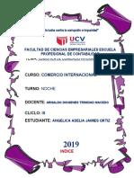 LOGÍSTICA DE COMERCIO INTERNACIONAL -ANGELICA DESARROLLADA
