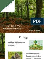 ecology -  field work - lockdown 2020 assignment