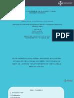 PRESENTACION_PUCE_SANTODOMINGO 2019 defensa actual jenny y mercedes