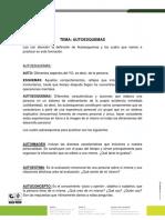 GUIA AUTOESQUEMAS.pdf