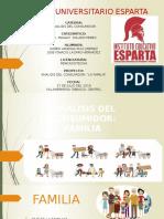 FAMILIA ANALISIS DEL CONSUMIDOR