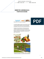 SEMENTES GERMINADAS - FONTE DE SAÚDE