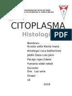 CITOPLASMA informe