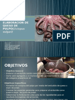 ELABORACION DE QUESO DE PULPO (1)