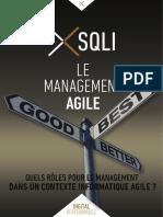 Management_Agile