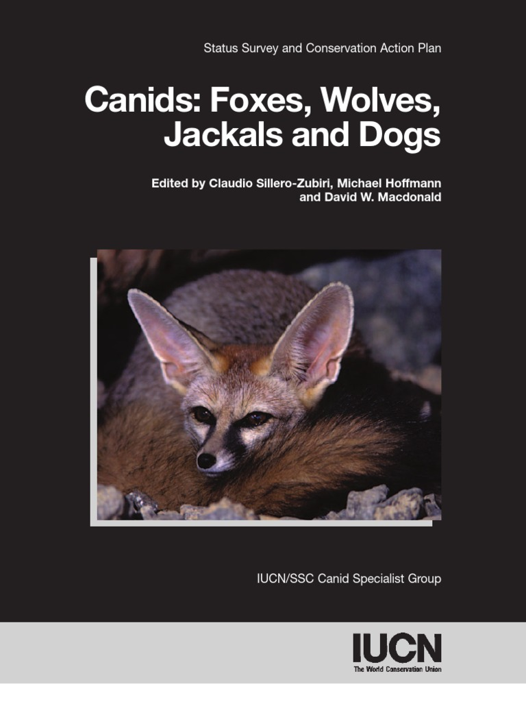 ae9e553cf Canids-Foxes Wolves Jackals and Dogs443 | Canidae | Conservation Biology