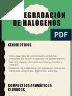 Degradación de halógenos y biorremediación