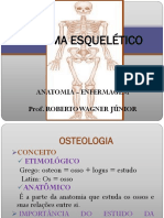 Aula 2. Sistema esquel+®tico.pdf