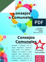 consejos comunales.pptx