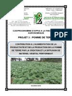 Projet+3+Pomme+de+terre