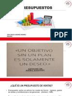 Presupuesto privado de ventas (1).pdf