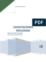 informe capacitaciones realizadas.