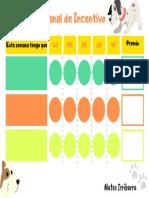 Mateo Irribarra - Economía de fichas.pdf