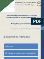 2020_DERECHOS HUMANOS Y SUS GARANTÍAS