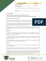 Plantilla protocolo individual #1