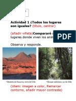 cuadernillo de actividades 3 y 4 lista.docx