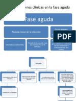 Manifestaciones clínicas en la fase aguda de Chagas