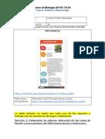 Formato entrega POA final_LinethRincon