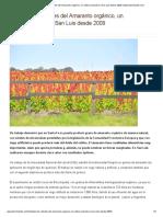 Estudian las virtudes del Amaranto orgánico, un cultivo probado en San Luis desde 2009 _ www.elsemiarido.com.pdf