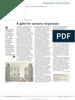 GATE FOR SENSORY  RESPONSES
