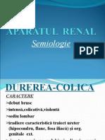 Semiologia AP.RENAL