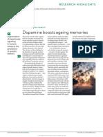 dopamine boosts ageing  memories