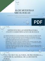 DIAPOS_TAREA.pptx