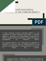 BNCC pdf