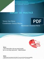RAPORT  DE  PRACTICĂ MODIFICAT.pptx