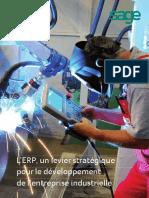 guide-erp-levier-strategique