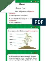 Plantas1 [Guardado automaticamente].pptx