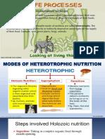 Life processes ppt.pdf