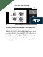 Desarrollo embrionario del intestino primitivo