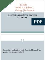 Fabula.pptx-prof.-Camelia-Monica-Dinu
