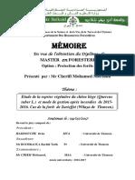 Cherifi.pdf