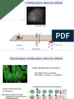 Cours-FRAP-MP1CC.pdf