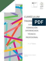 curriculo transitorio