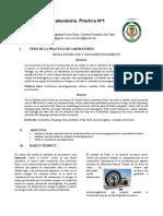 Informe1_Fisica2.1.docx