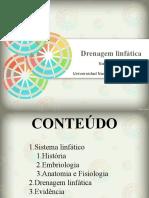 seminario drenaje.pptx