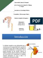 diabetes nefrogenica