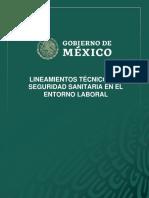 Lineamientos_de_Seguridad_Sanitaria._Versio_n_17_mayo_final